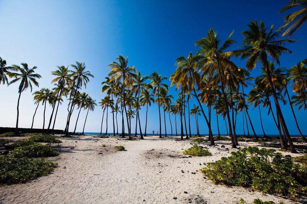 ★☆ハワイハネムーン☆★***名古屋発***ハワイ王室のリゾート地に建つ『マウナラニベイ』(ハワイ島)4泊&ビーチコマー(オアフ島)3泊のたっぷり9日間/デルタ航空利用/安心の送迎付き