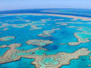 毎週水曜発≪ニューギニア航空増便キャンペーン!≫グレートバリアリーフの海へ☆ケアンズ4日間