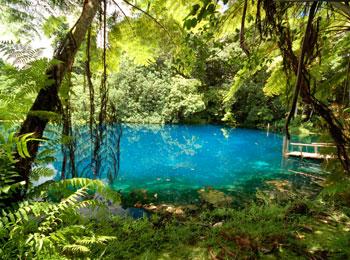 南太平洋の秘境・バヌアツ☆サント島(2泊)・神秘のブルーホールとエファテ島&ニューカレドニア8日間