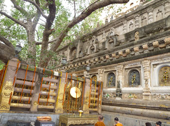 インド 仏跡 ブッダガヤ