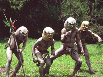 地球最後の秘境・パプアニューギニア☆独自の文化が根付くハイランド地方・ゴロカ5日間☆アサロ渓谷マッドマン観光にもご案内♪≪全送迎付≫