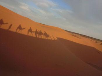 満天の星空を仰ぐ砂漠のテント泊体験付き!青の街シャウエン、迷宮都市フェズとサハラ砂漠☆モロッコハイライト8日間(エミレーツ航空利用)