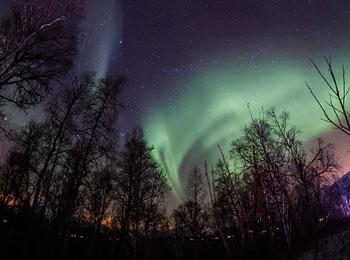 ノルウェーでオーロラウォッチング! 北極圏最大級の街トロムソ+おとぎの国デンマークの首都コペンハーゲン7日間