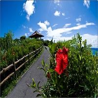 石垣の東海岸を一望できる玉取崎展望台(イメージ)