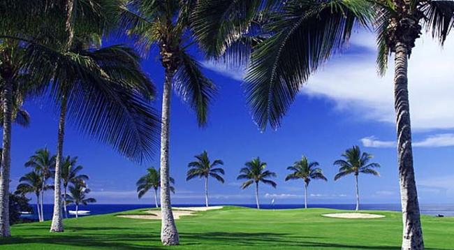 ヤシの林や青い海、周囲に広がる黒い溶岩などハワイ島ならではのゴルフを満喫できます/ワイコロアビーチマリオット/イメージ