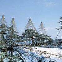 日本三名園 特別名勝「兼六園」の冬