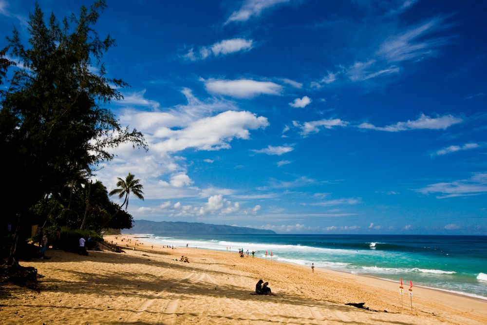 [羽田発]ハワイアン航空で行くホノルル4日間【エコノミークラス】『レアレアトロリー』乗り放題!週末弾丸ハワイ≪2名1室≫