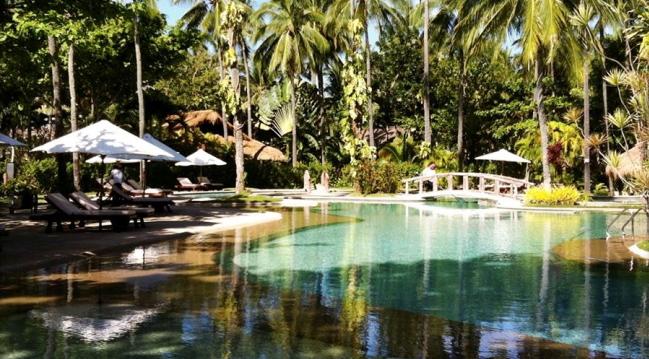 美しいガーデンに囲まれたプールです。プールサイドにはチェアーもあります/イメージ