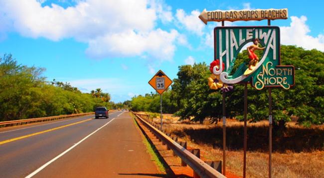 ノースショアやオアフ島の鉄板スポットを巡るツアー付き!/イメージ